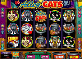 Alley Cats Casino Game